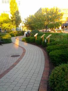 ap path