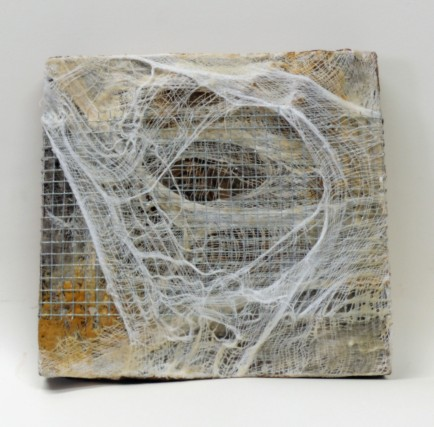 "6x6"" encaustic, wire, cheesecloth"